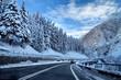 winter street - 19001794