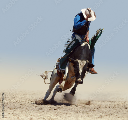 In de dag Koe Cowboy Riding a Fresian Bull