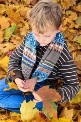 Boy playing in Autumn leaves