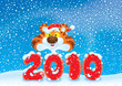 2010 New Year's background