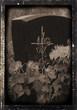 Friedhofsgesteck - floral arrangement cemetery 25