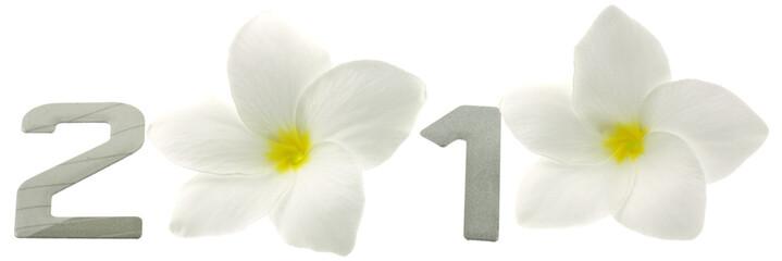 bonne année chiffres fleurs blanches 2010 fond blanc