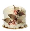 Panettore Farcito ricoperto di cioccolato bianco