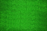 Carpet of green artificial  grass poster