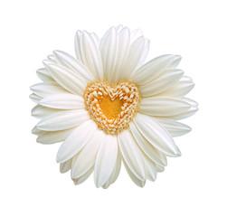 cuore nel fiore