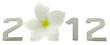 2012 année fleur frangipanier fond blanc