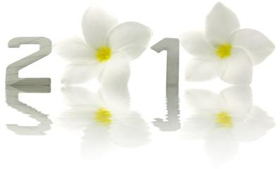 2010 année fleur frangipanier reflets fond blanc
