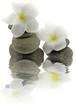 décor zen fleurs blanches frangipanier galets fond blanc