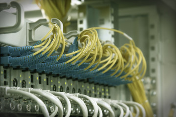 Fiber Optic cables  and UTP Network cables.