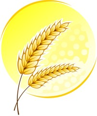 Illustration of wheat with colour background