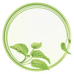 Blätter-Kreis
