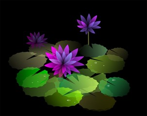 Digital   painting  of  lake with lotus