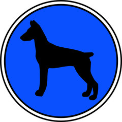 Dobermann Button blau