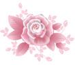 Pink silky rose