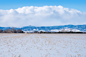 Field on the Prairie Under Snow