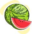 Illustration of water melon with colour shading