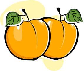 Illustration of orange and leafs
