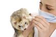 The veterinary surgeon with ferret.