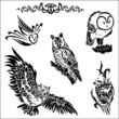 Eule, owl, Eulen, Raubvogel, Vogel, Kauz