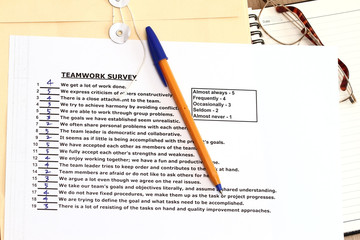 Teamwork Survey