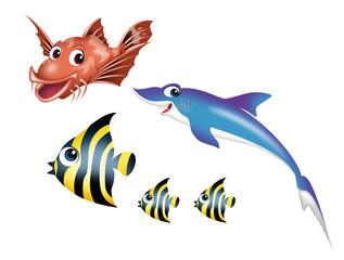 海の生物のキャラクター001