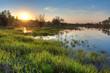 spring sunset landscape - 19164724
