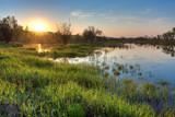 Fototapety spring sunset landscape
