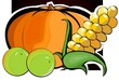 Illustration of pumpkin, maize and green berries