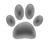 Paw print isolated on white background