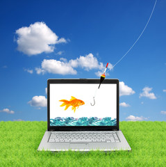 Goldfish in a laptop