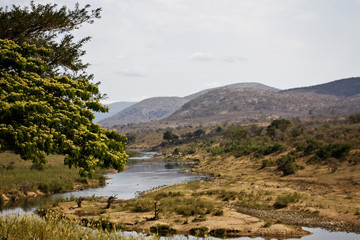 LANDSCAPE WITH THE CROCODILE RIVER