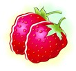 Illustration of two strawberry
