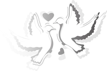 Illustration of two bird with love