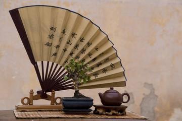 Chinese Fan and Bonsai