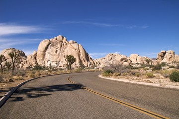 Winding road in Joshua Tree National Park
