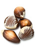 Five chocolate mollusk shaped assortments
