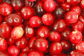 Close view of cranberries