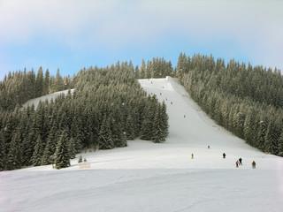 Ski track in Carpathian mountains