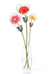Bouquet from daisy-gerbera with heads inside lamps