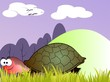Illustration of a tortoise walking in a landscape