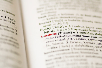 "Closeup of the word ""business"" in a dictionary"