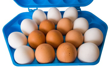Eggs and the dark blue container.