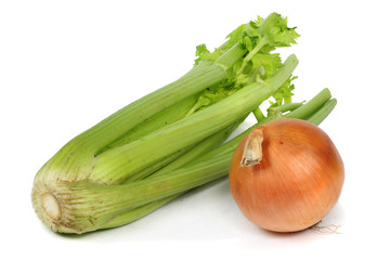 a single onion and celery close-up white background