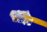 Close-up view of the yellow Ethernet (RJ45) cable poster