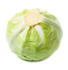 whole head of cabbage