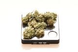 Medical marijuana on a digital scale. poster