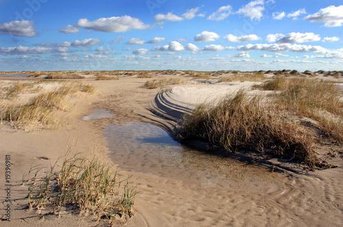 Fototapeten,north sea,amsel,strand,watt