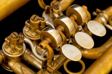 Trompete 05