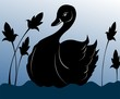 Illustration of a swan in water