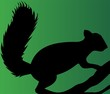 Illustration of a silhouette of a squirrel